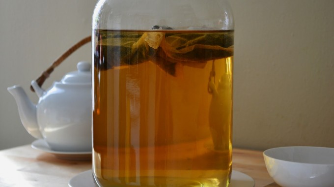 Homemade Green Tea Kombucha