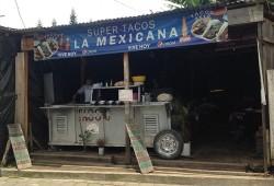 Tacos 12×3 In San Pedro