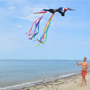Flying-a-kite