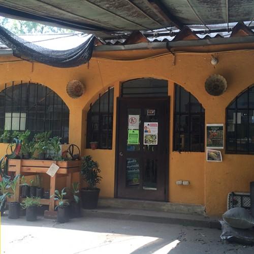 RaCo Life Caoba Farms Tienda