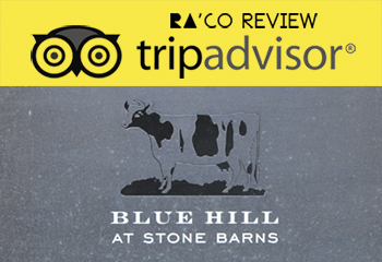 Raco Life Trip Advisor Blue Hill